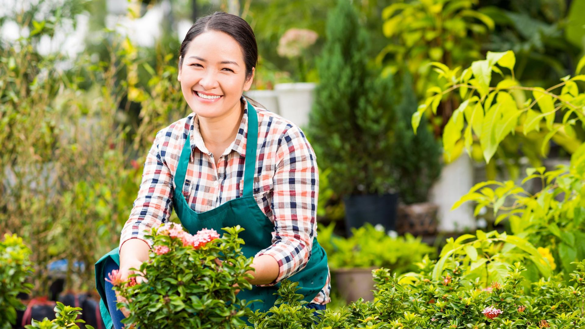 Servicenummer für kleine Unternehmen